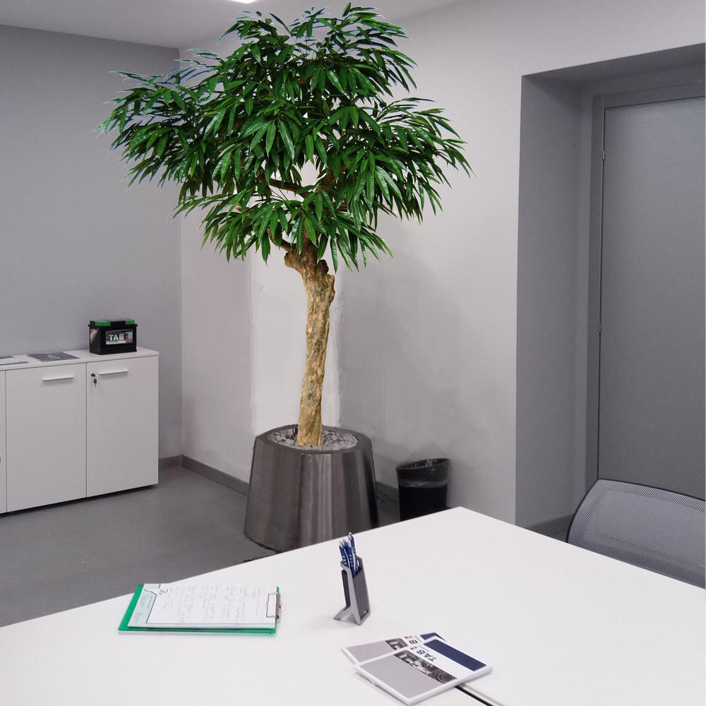 Longifolia Nidra 250 cm Green